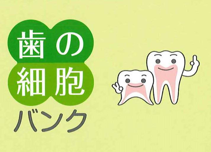 歯の銀行(ティースバンク)